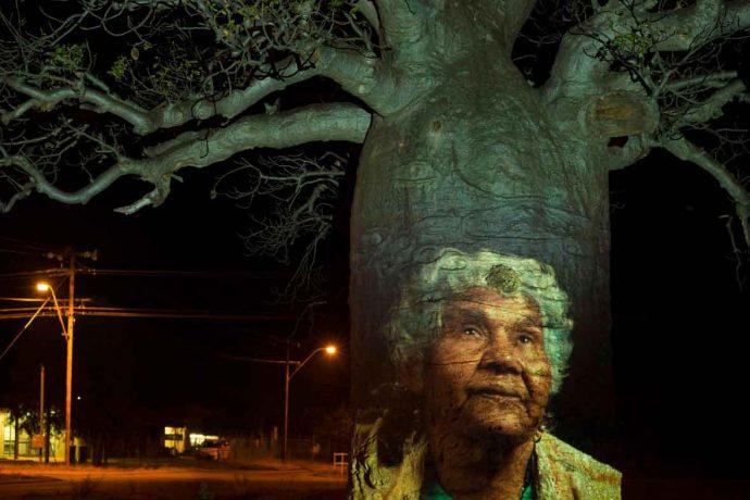 DADAA | Arts Outreach | digital projection of Aboriginal elder on a Boab tree