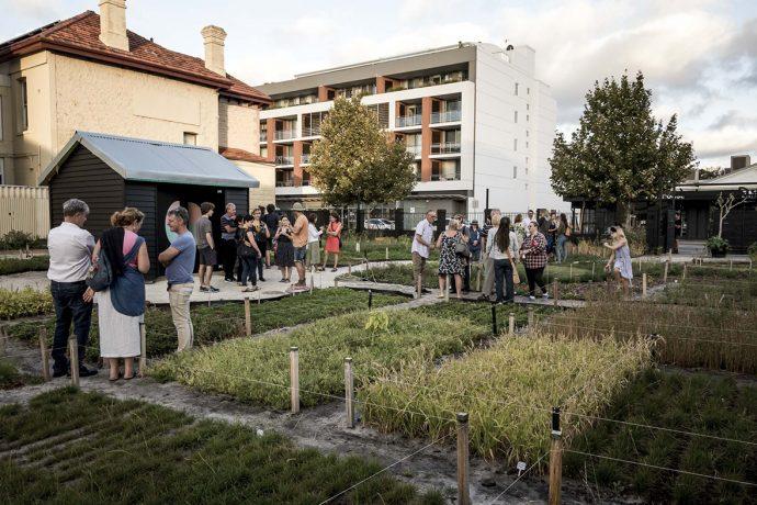 DADAA | guests in community garden